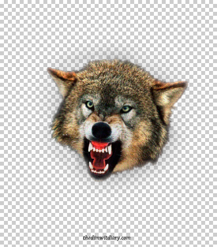 007 Isolated Layer Of The Ferocious Wolf Head