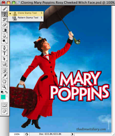 003 Cloning Mary Poppins Rosy Cheeked Witch Face