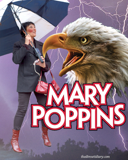 006 Mary Poppins Flying Umbrella Witch Poster Final